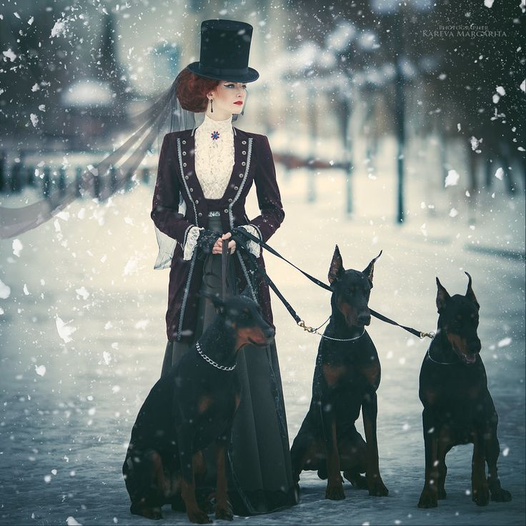 Untitled by Margarita Kareva on 500px - this is stunning!!!!  So #magical... #dobermans #canine