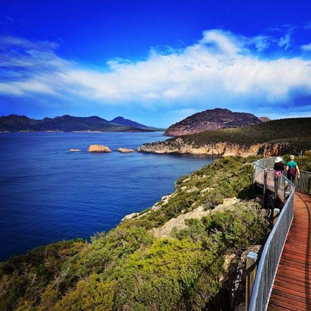 walking at Cape #Tourville, Coles Bay, #Tasmania.. #Australia by walruswhisperer (instagram)