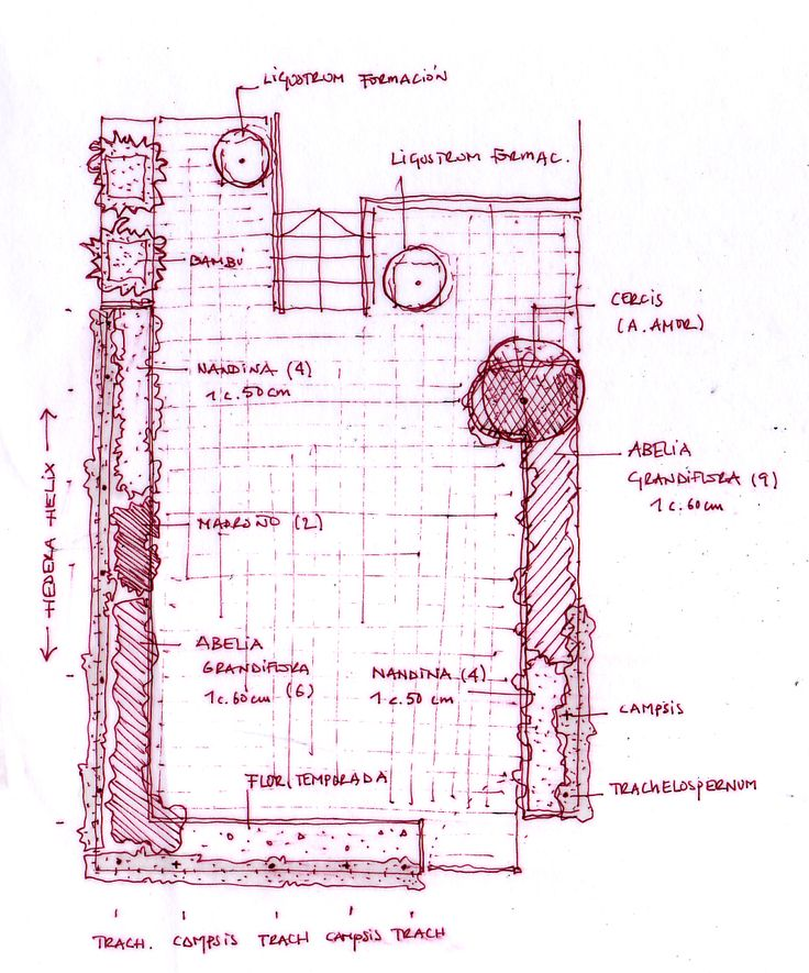 Plano de jardin dise o jardines dibujos croquis y for Croquis jardin