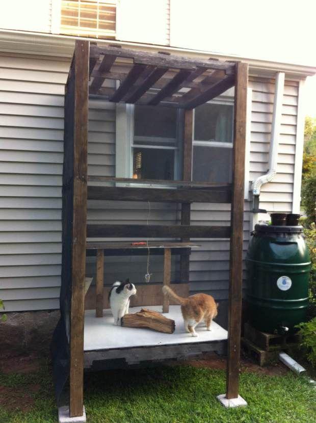 I built an outdoor cat enclosure after one of my cats was diagnosed with gallstones. They were indoor-outdoor cats for a few years, but I had long wanted to build them something like this that keeps them closer  to home and allows them to enjoy the fresh air and sun. I think next Spring I may plant around it to give them a little extra interest.