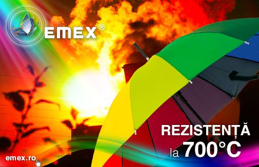 Vopsea rezistenta la temperaturi ridicate Emex TRS 700