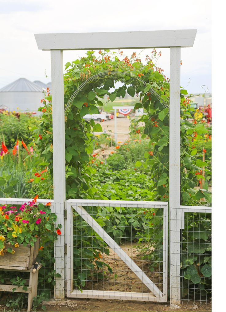 Build simple vegetable garden gate woodworking projects for Simple vegetable garden