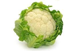 Výsledek obrázku pro zelenina druhy