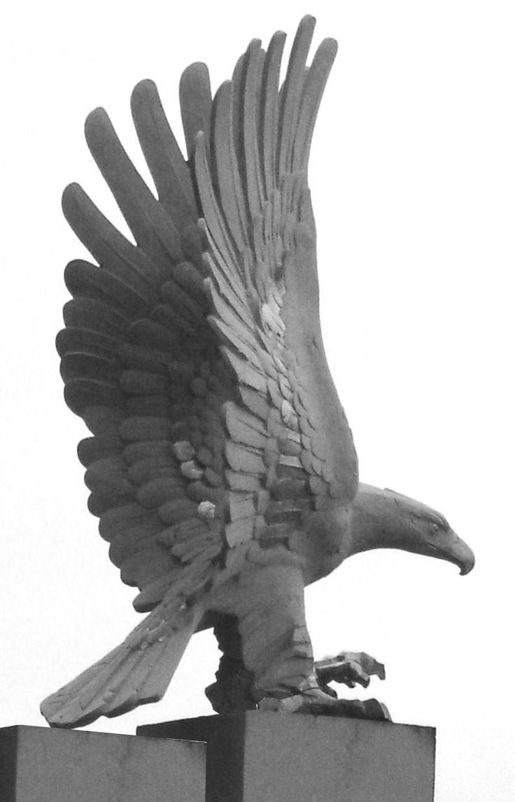 Eagle - author Jakub Blazejowski