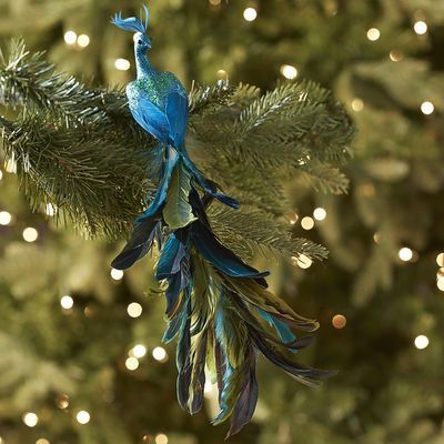 212 Best Images About Proud Peacock Decor On Pinterest