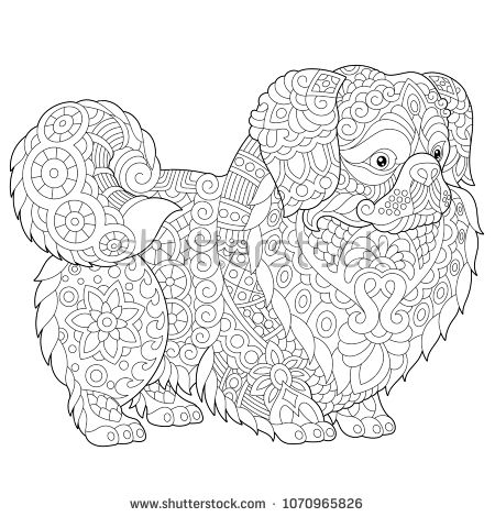 Coloring Pages Pekingese Or Japanese Chin Dog Breed Adult Coloring Book Idea Antistress Freehand Sketch Drawing With Doodle And Zen Zentangle Art Colou