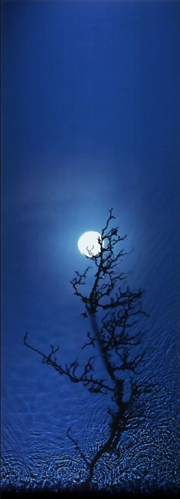 Moon and Blue