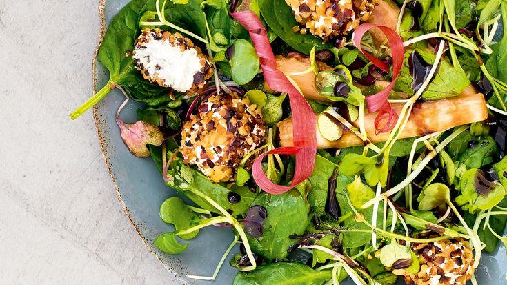 Raparperi-vuohenjuusto salaatti