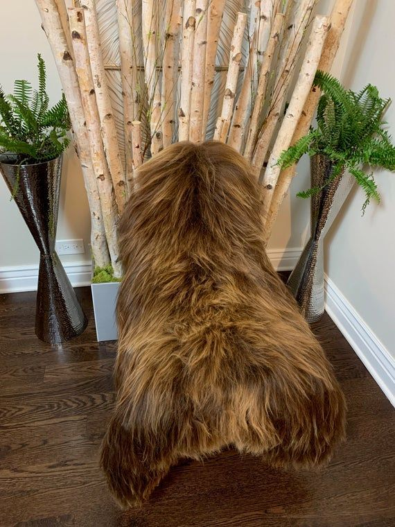 XL Brown Sheepskin Rug Genuine Icelandic sheepskin fur