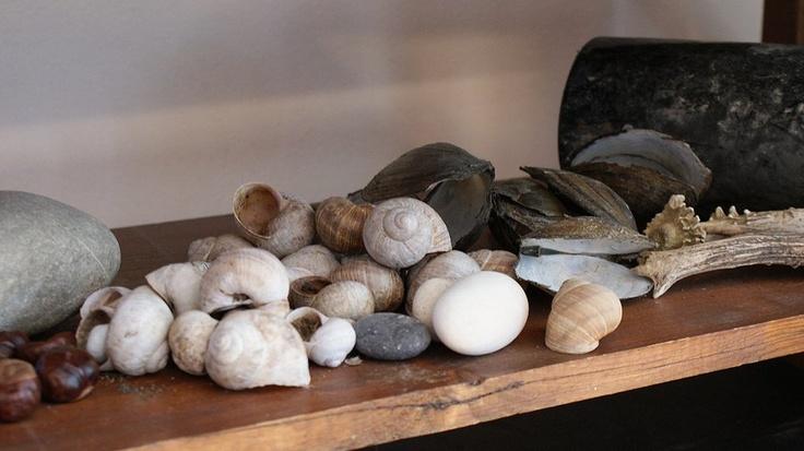 Faktkul Design, rustic country style decoration shells, bottles, natural