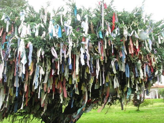 buddhist wishing tree