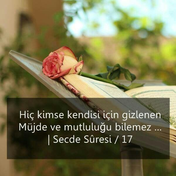 Now no person knows what delights of the eye are kept hidden (in reserve) for them - as a reward for their (good) deeds.  QURAN KERIM 32. 17