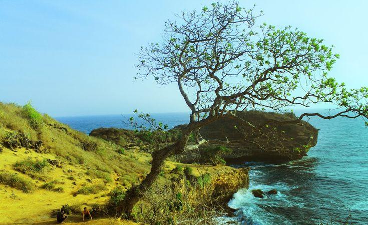 Pantai Kesirat Keistimewaan Pantai Tersembunyi di Yogyakarta - Yogyakarta