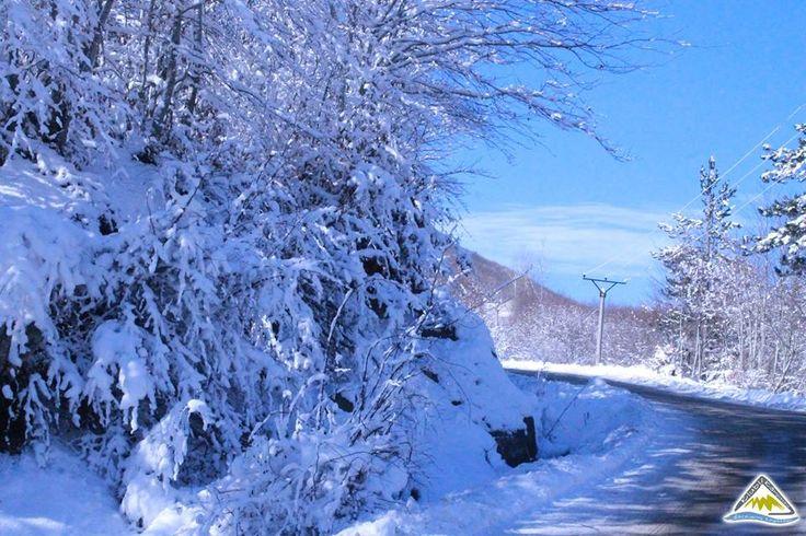 Visit Albania - Dardhe #Visit #Travel #Albania #Dardhe #Tourism #Beautiful-Albania #Winter #Albanian #City #Vocation #Destination