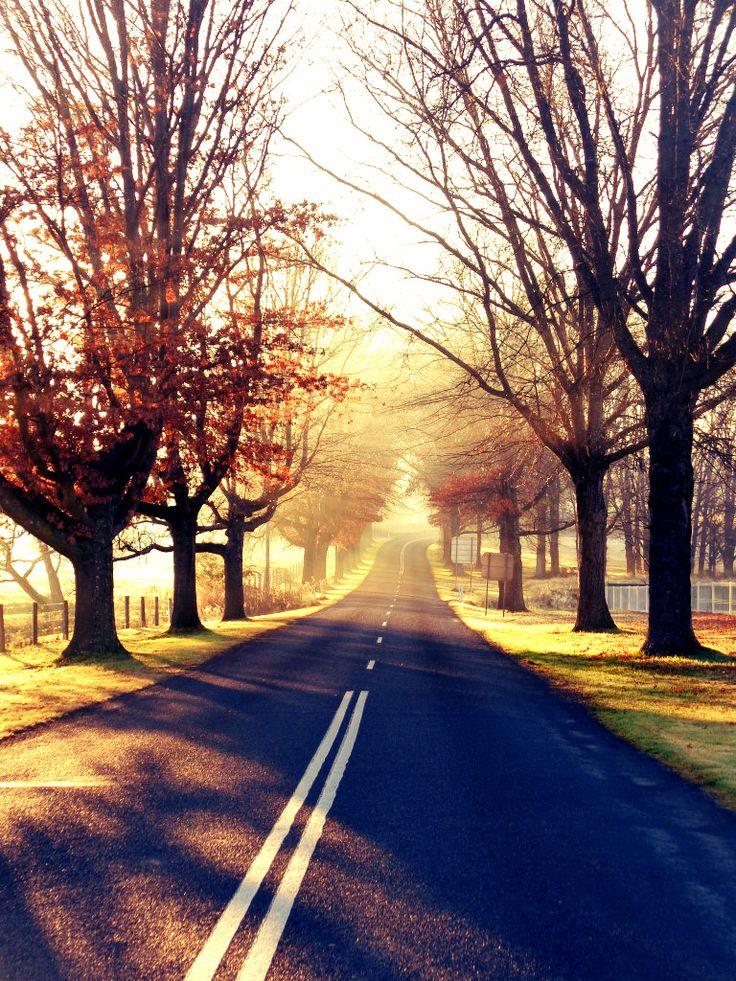 Bruxner Highway East, Tenterfield.
