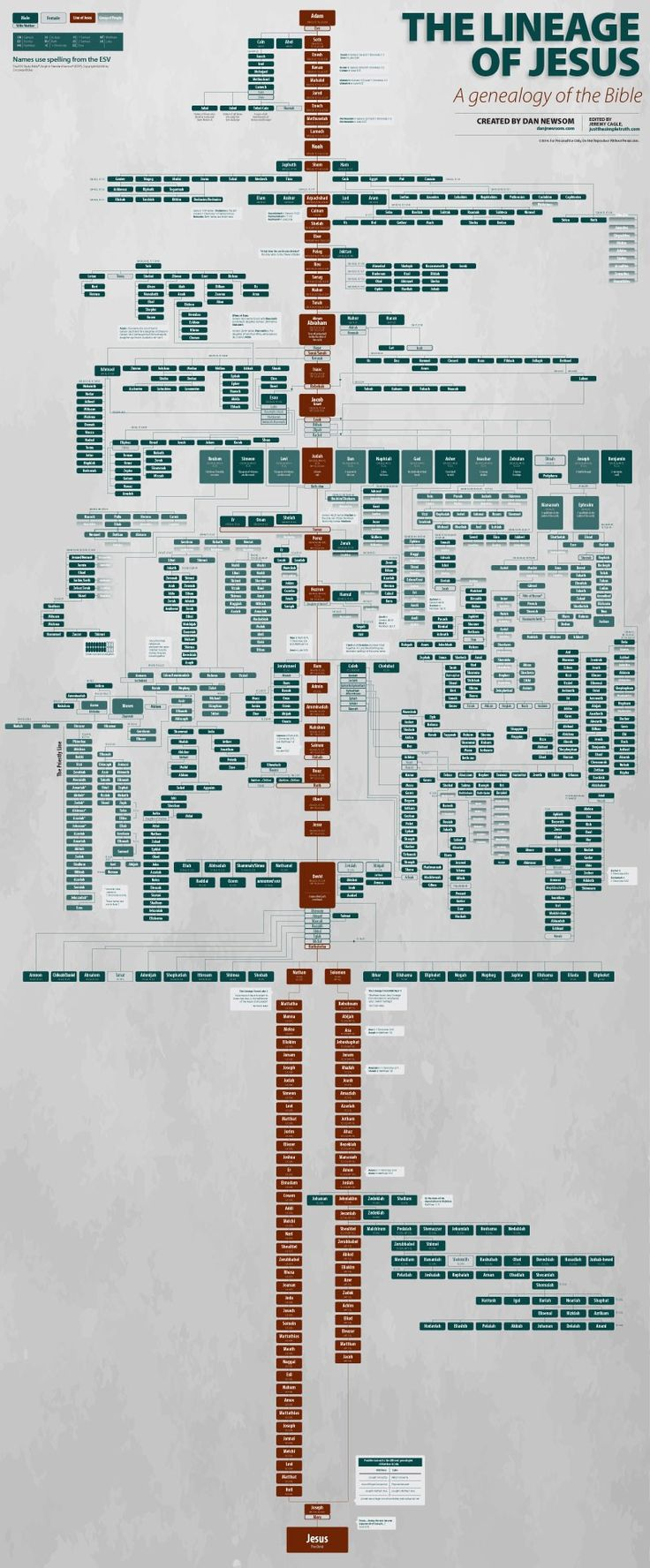 GENEALOGY IN THE BIBLE - King James Version