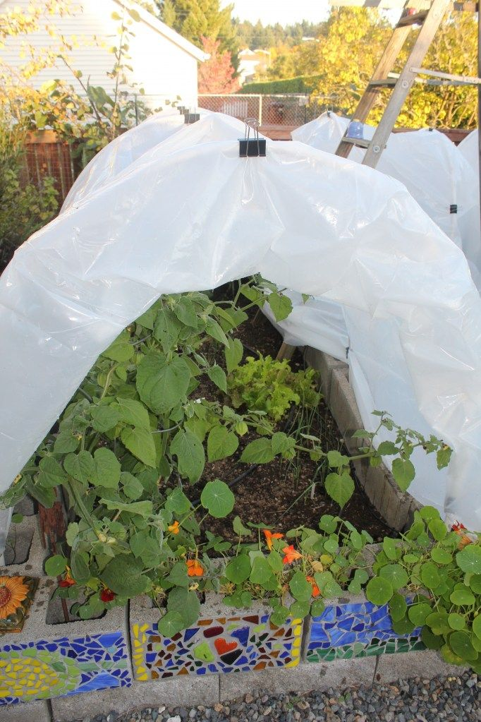 Easy Season Extension: PVC Hoop House .... And the mosaics on the fronts of the cinder blocks!