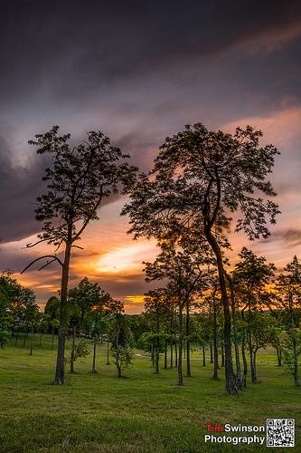 Horn Park Toowoomba Sunset