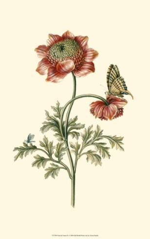 Flora and Fauna IV Art Print