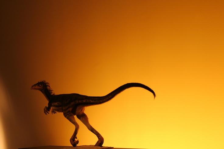 Se estrena ANIMAL ARMAGGEDON  esta noche 21h en la 2. Impresionante producción de la BBC sobre la desaparición de los dinosaurios.: Animales Armaggedon, Estrena Animales