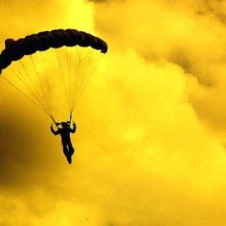 Gliding across yellow skies