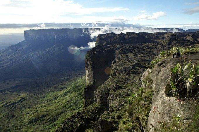 ギニア高地としても知られる「ロライマ山(Mt. Roraima)」。地球最後の秘境とも言われ、特有の生態系を持っています。