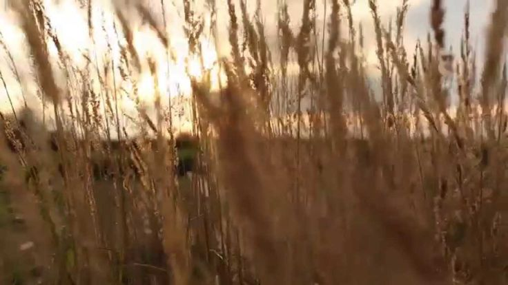 Promotional Film - Poland