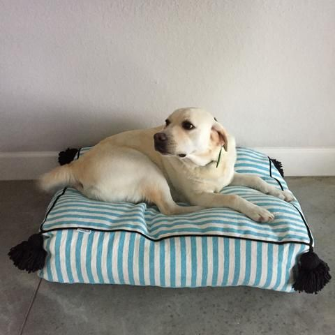 Our Turquoise Stripe Large Pet Bed from Atelier Boemia will add a global vibe to any decor. This boho chic dog bed is handmade in Morocco from vintage textiles. Accented with ivory pom poms, this Large Pet Bed is the perfect stylish resting spot for man's best friend. Includes insert.