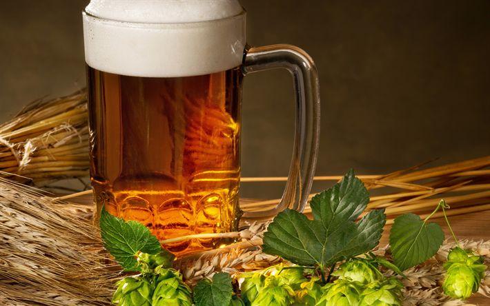 Download wallpapers beer, hops, beer mug, glass, wheat