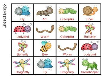 Insects Bingo | spring | Bugs, insects, Bugs, Preschool