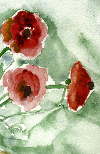 Hanna G. (mapart.me), Red Poppies