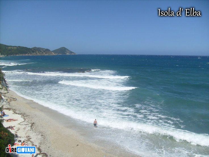 Sand, sea and trees in Isola D'Elba - Tuscany, Italy