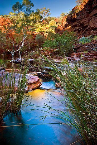 Weano Gorge, Karijini National Park, Western Australia. #travelnewhorizons