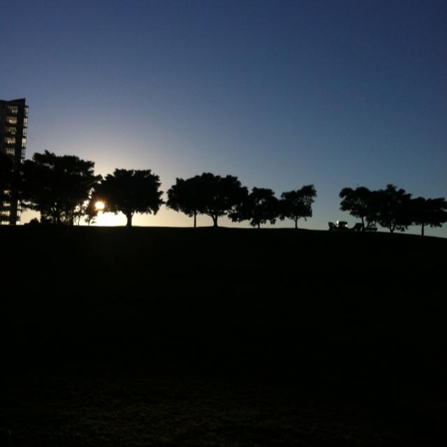 Dawn. Sydney Park.