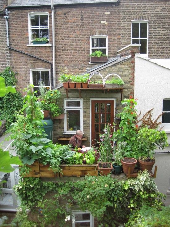 Balcony and container gardening. Urban gardening at its finest.