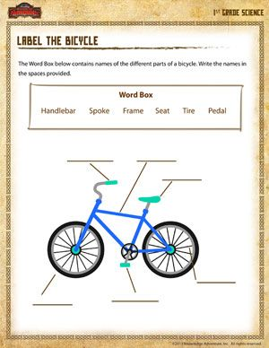 1st grade science worksheets   Label the Bicycle - Printable 1st Grade Science Worksheet