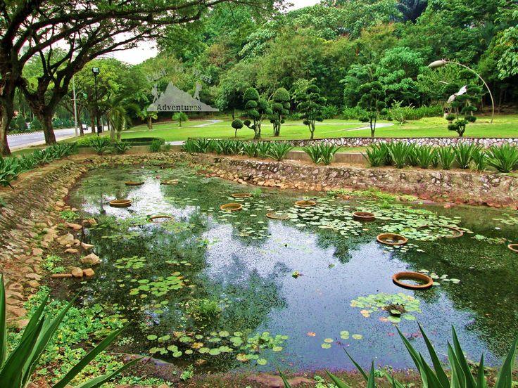 Who would believe that this is in one of the biggest cities in the world 🌲🌳💚✈️ CITY OF GARDENS 🌳 من كان يتخيل ان هذا المنظر في واحدة من أكبر المدن في العالم #تصويري #مدونة #سفر #سافر #مسافرون #مسافرون_العرب #مغامرات_من_الشرق__الى_الغرب  #كوالامبور #ماليزيا #حدائق  #easttowestadventures #travelblogger  #travelphotographer #blogger #malaysia #kualalumpur #gardens #thingstodo #thingstodoinkualalumpur