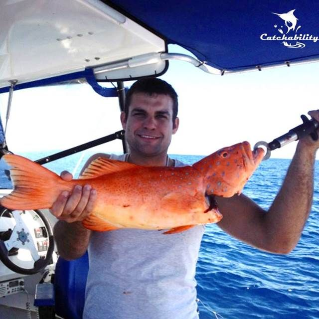 Coral Trout - Courtney Bird - Catch of the Week