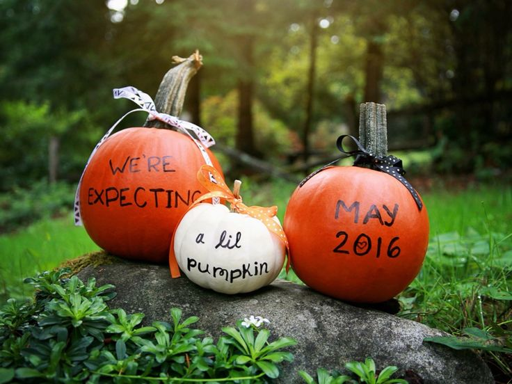 Pregnancy Announcement- cute October pumpkin announcement for your baby's due date! Created by Www.kelleyme.photography. #kelleymephoto