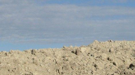 """""""La disponibilità idrica è sempre più esigua, specie in val d'Enza che soffre del maggior deficit in regione già in periodi normali – afferma il coordinatore di Agrinsieme Reggio Emilia Antenore Cervi – e che in queste settimane sta affrontando un momento di emergenza acuta. Per questo non può succedere quanto avvenuto ieri, quando Arpae ha deciso l'interruzione dell'erogazione di acqua dalla traversa di Cerezzola al canale d'Enza, che è l'asta che rifornisce il territorio agricolo…"""