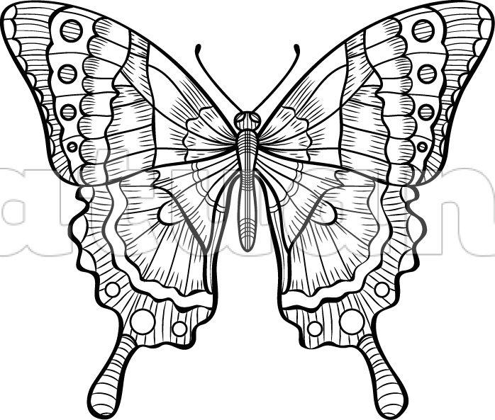 Motýl - L - Katuan's
