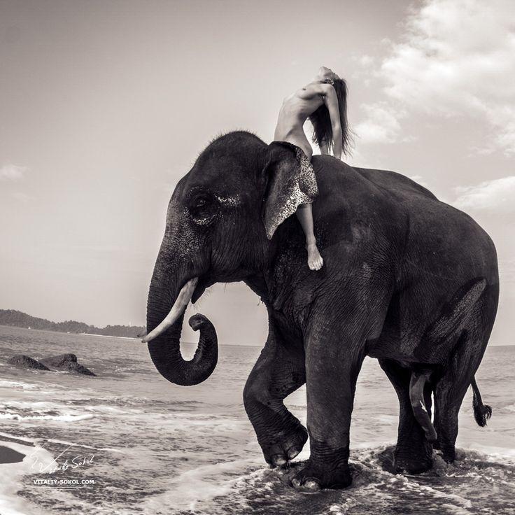 Elephant has sex girl, amateur big butt horny woman