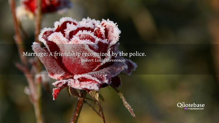 Marriage: A friendship recognized by the police.