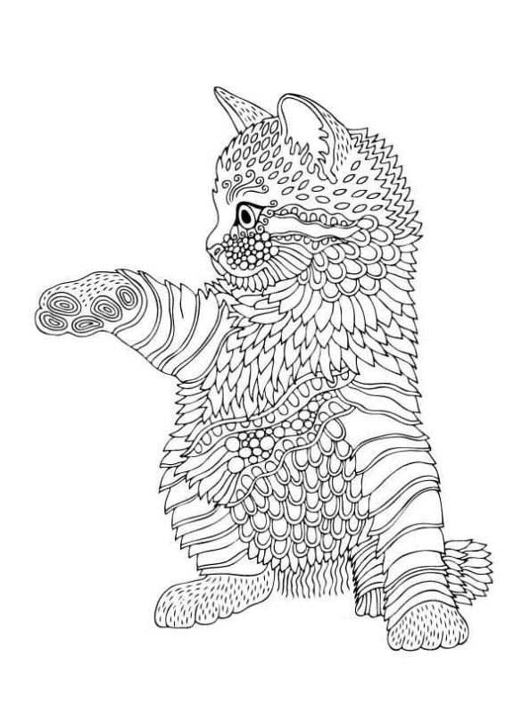 26 Coloring Pages Of Animals For Teens And Adults On Kids N Fun Co Uk Op Kids N Fun Vind Je Altijd D Cat Coloring Book Cat Coloring Page Animal Coloring Pages