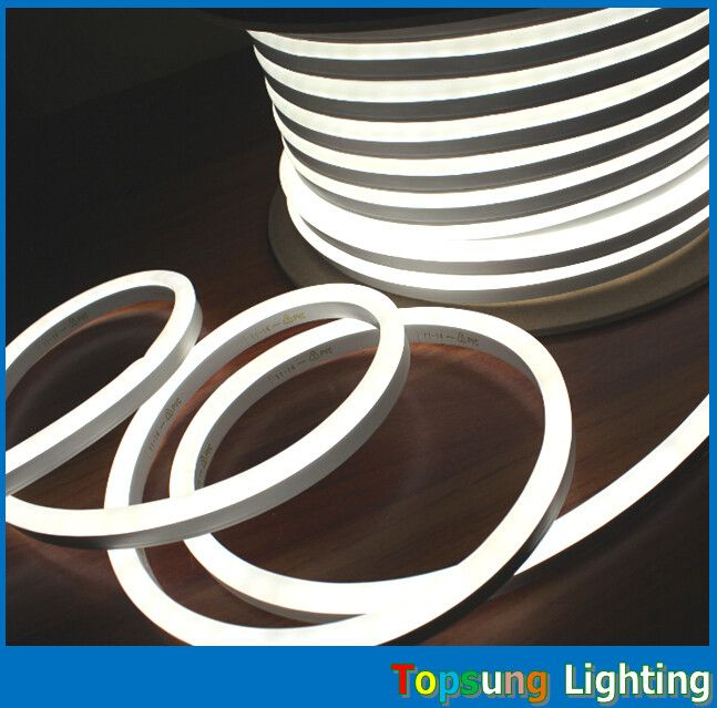 http://www.topsunglighting.com/sale-8596421-top-view-220v-mini-neon-flexible-led-lights-108leds-m-for-signs.html