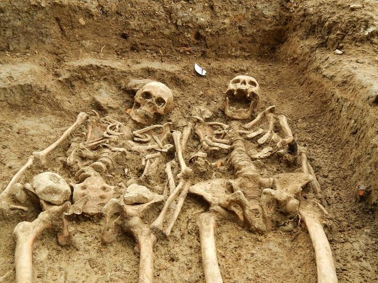 """#Archaeology ~ smithsonian.com   September 19, 2014.  This Skeleton Couple Has Been Holding Hands for 700 Years.  couple living in Medieval England have spent hundreds of years lying side by side in a burial ground, and, as their recently uncovered remains show, all the while they've been """"holding hands""""—they were found with their arms crossed one over the other."""