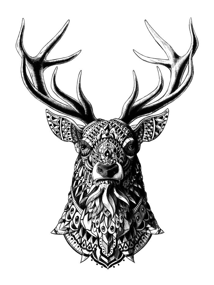 tattoo style animal illustrations by ben kwok illustrations pinterest illustrations. Black Bedroom Furniture Sets. Home Design Ideas