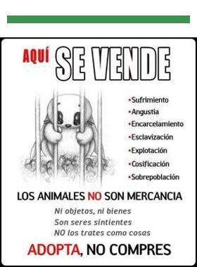 Contralaventadeanimales, los animales no son cosas, boikot a la venta de animales, no compres animales en Granada