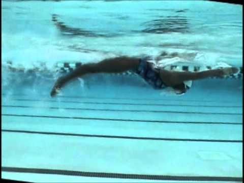 Butterfly - YouTube~This stroke burns the highest number of calories per hour~A good one to work on for the New Year