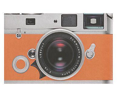 Capacho Photo - 40X60cm